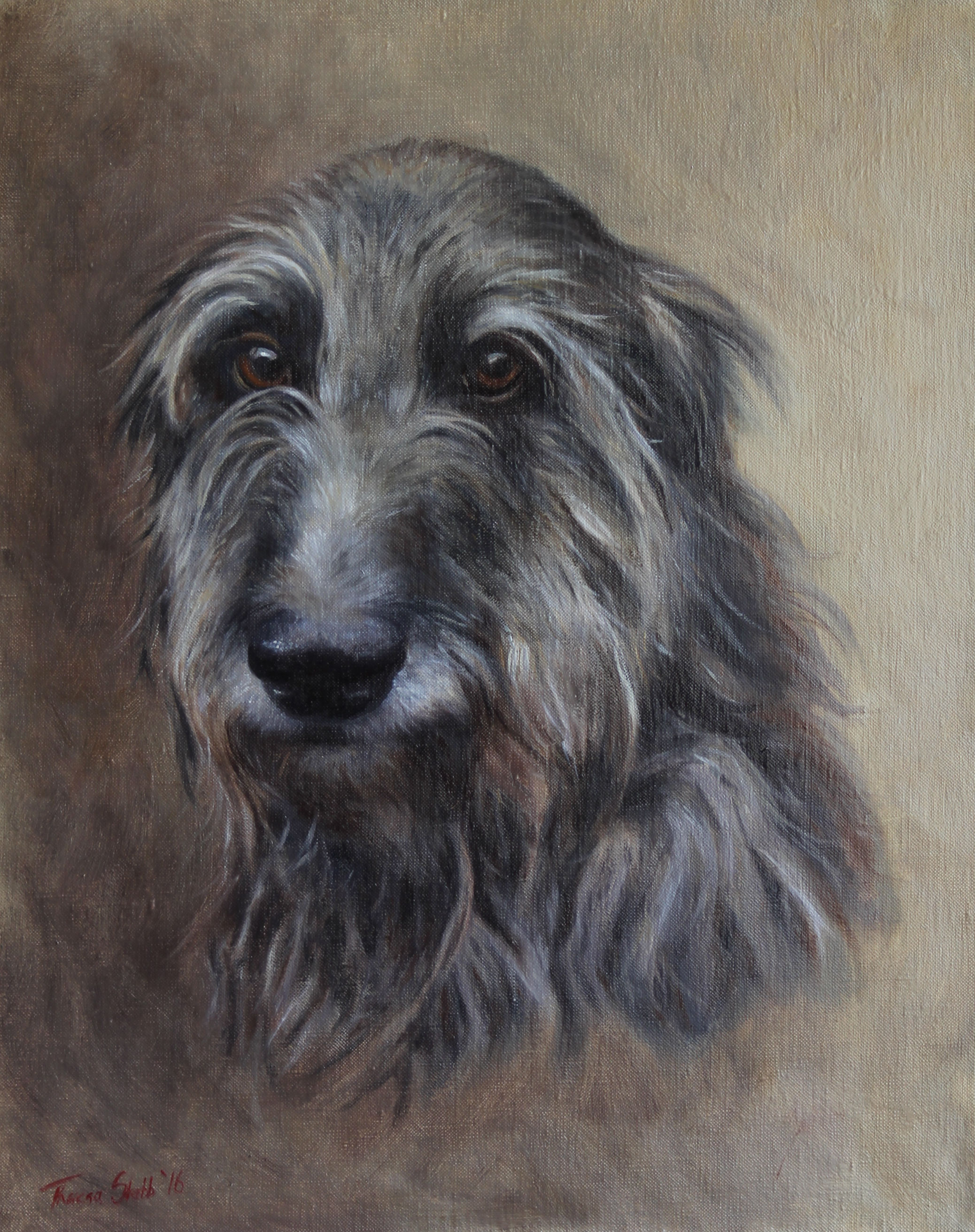 Caleb Scottish Deerhound Oils