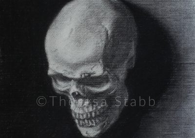 Charcoal cast drawing of skull on paper
