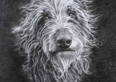Ghillie Deerhound, 2014. SOLD.